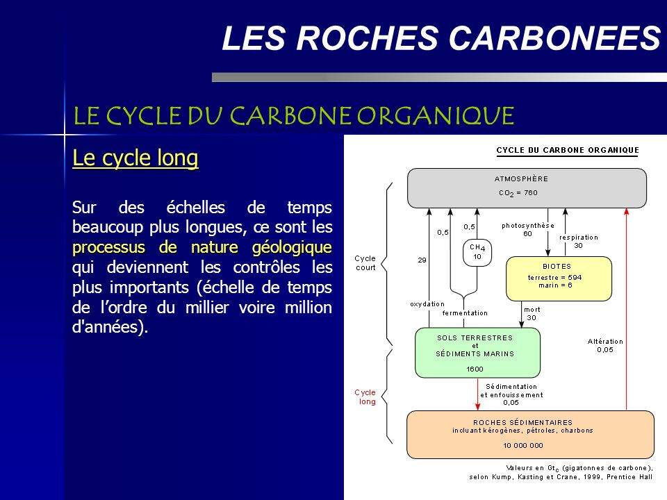LES ROCHES CARBONEES LE CYCLE DU CARBONE ORGANIQUE Le cycle long