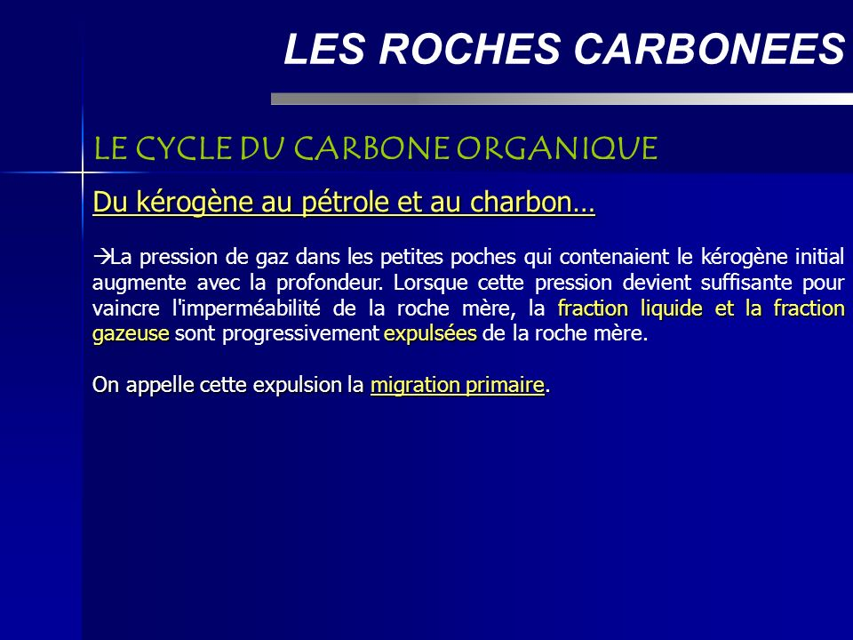 LES ROCHES CARBONEES LE CYCLE DU CARBONE ORGANIQUE