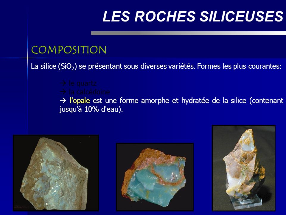 LES ROCHES SILICEUSES COMPOSITION