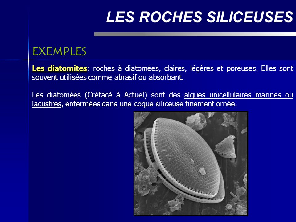 LES ROCHES SILICEUSES EXEMPLES