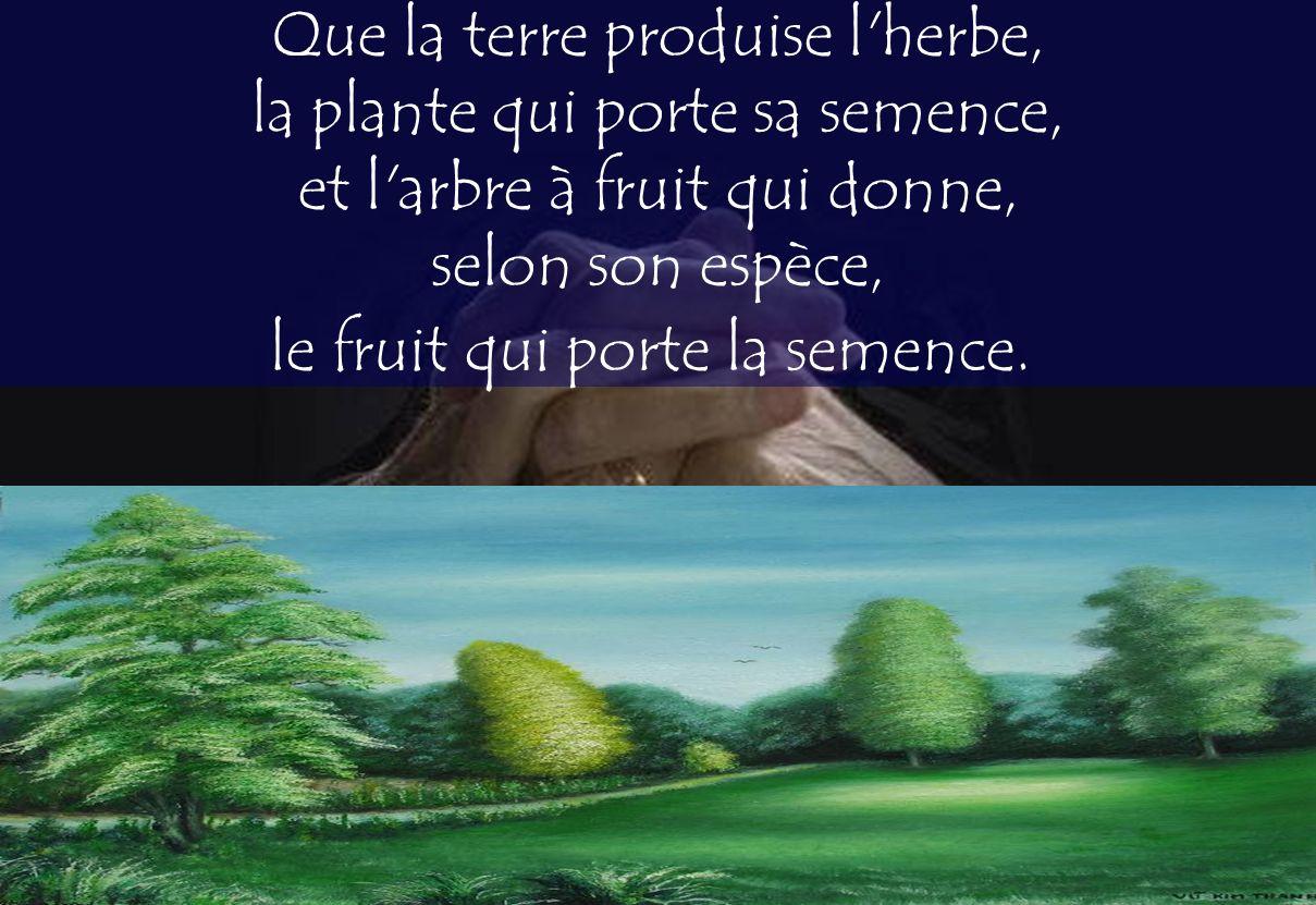 Que la terre produise l herbe, la plante qui porte sa semence, et l arbre à fruit qui donne, selon son espèce, le fruit qui porte la semence.