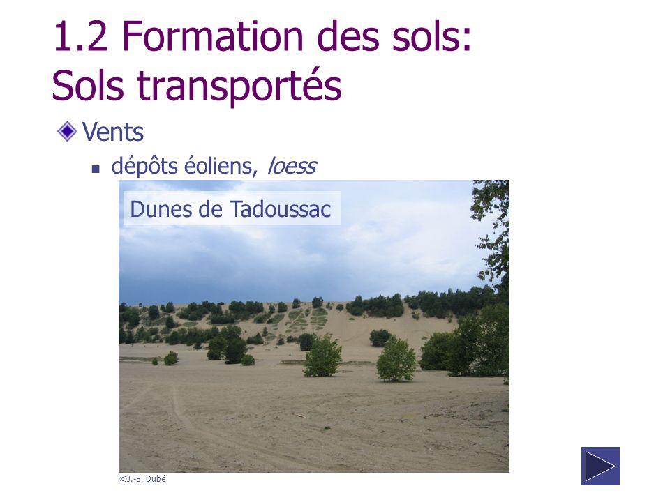 1.2 Formation des sols: Sols transportés