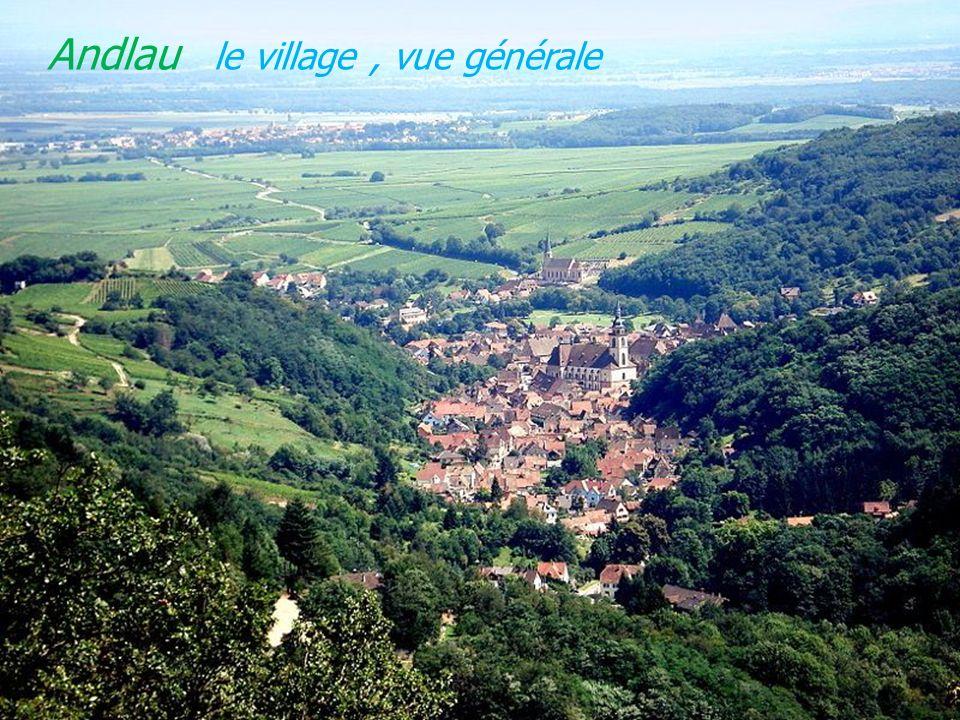 Andlau le village , vue générale