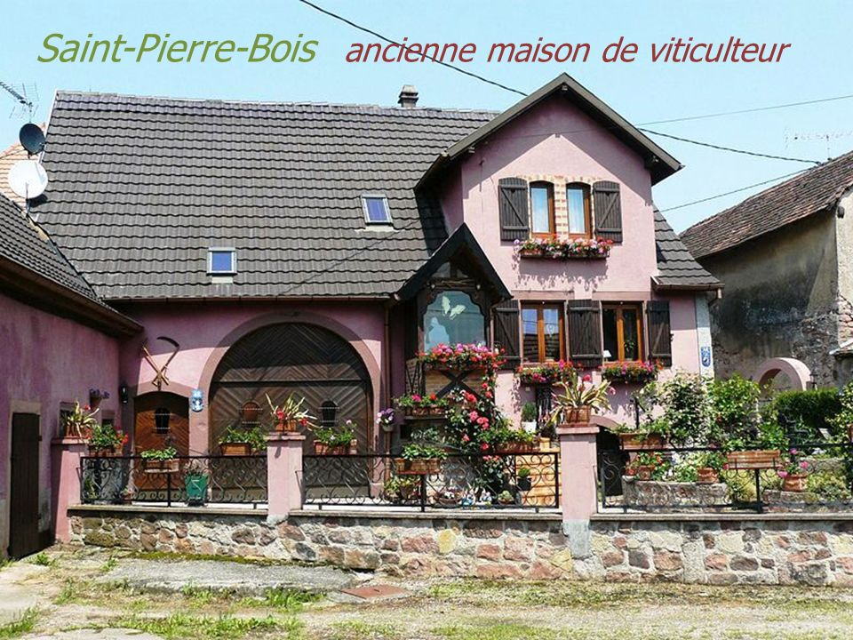Saint-Pierre-Bois ancienne maison de viticulteur