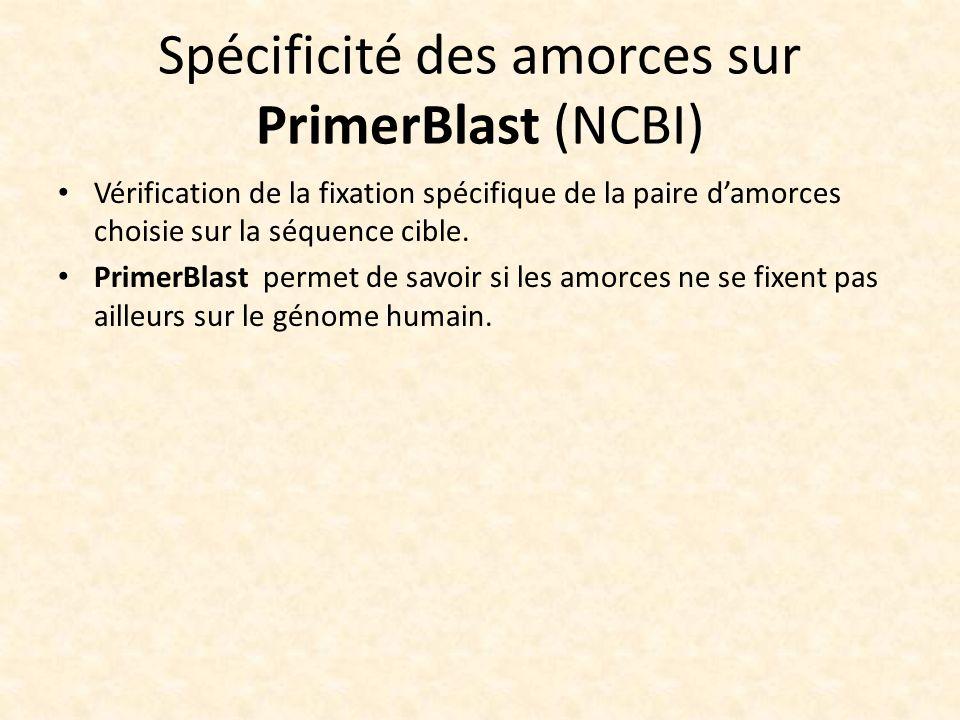 Spécificité des amorces sur PrimerBlast (NCBI)