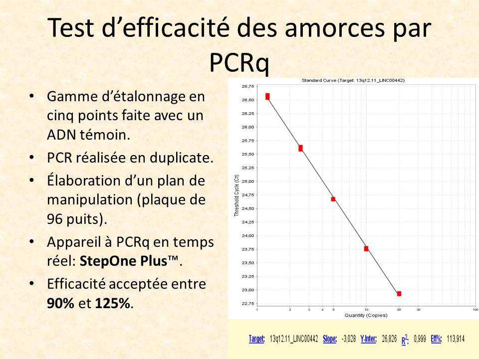 Test d'efficacité des amorces par PCRq