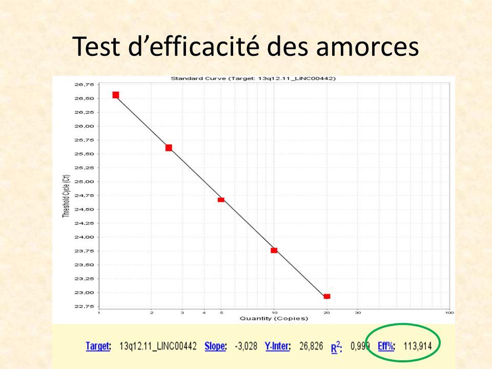 Test d'efficacité des amorces