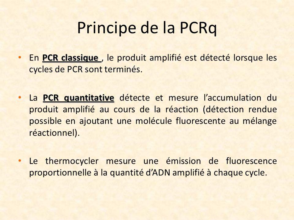 Principe de la PCRq En PCR classique , le produit amplifié est détecté lorsque les cycles de PCR sont terminés.