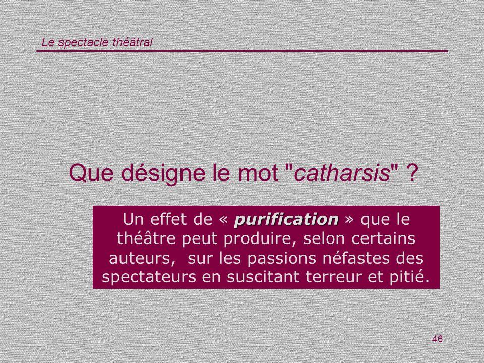 Que désigne le mot catharsis