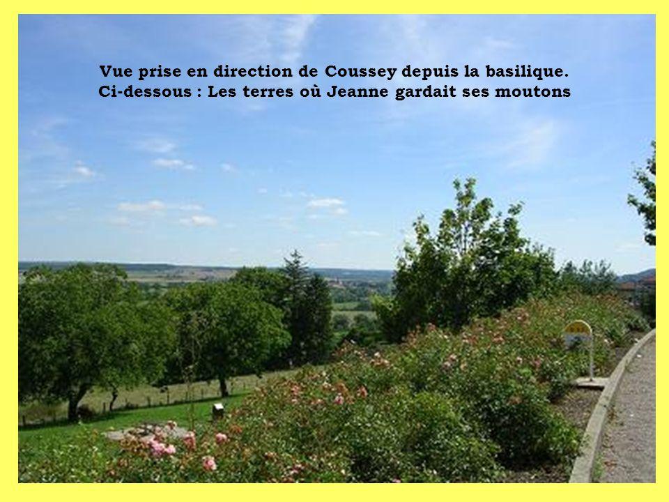 Vue prise en direction de Coussey depuis la basilique