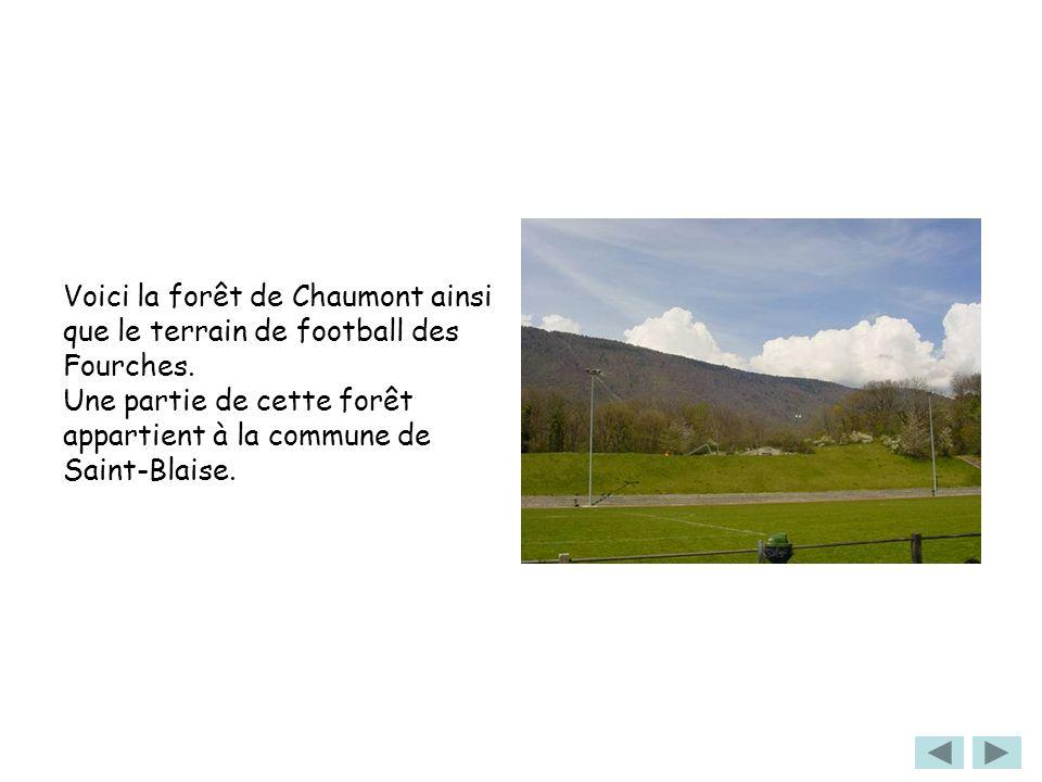 Voici la forêt de Chaumont ainsi que le terrain de football des Fourches.