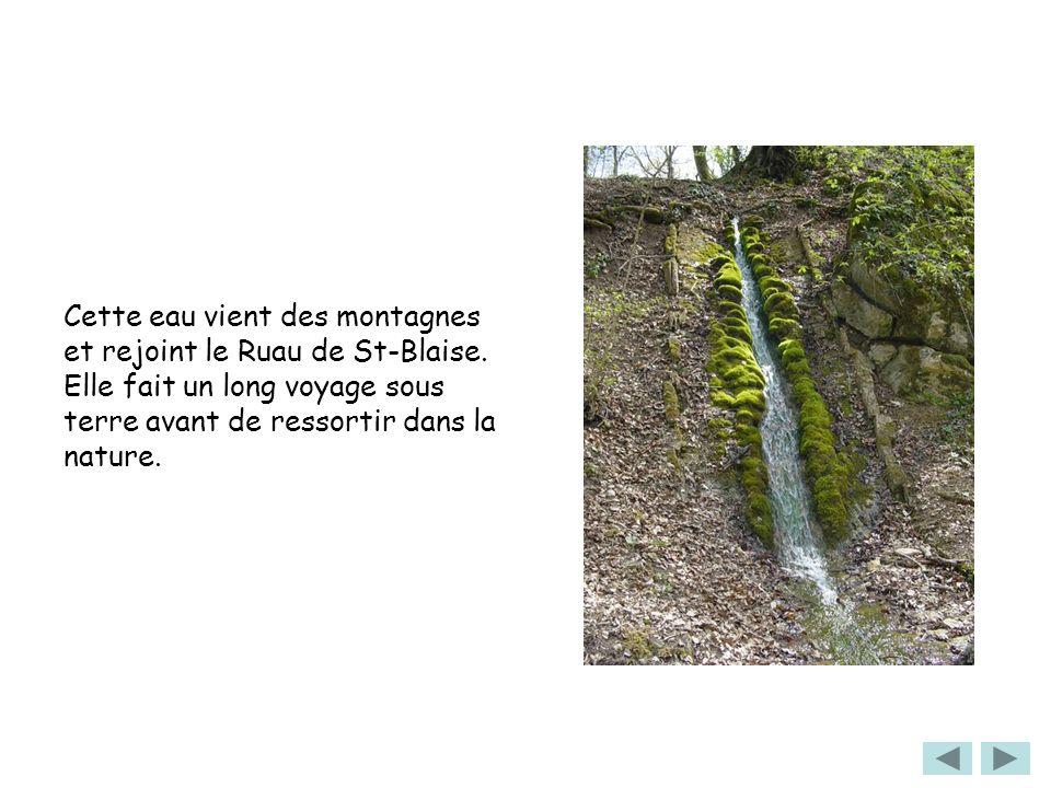 Cette eau vient des montagnes et rejoint le Ruau de St-Blaise