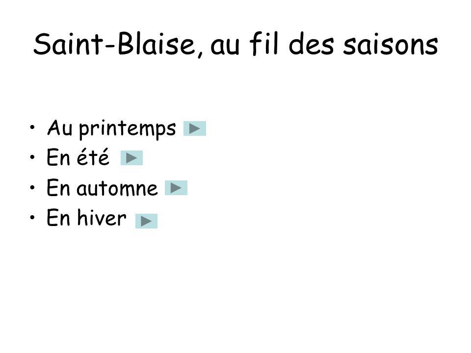 Saint-Blaise, au fil des saisons