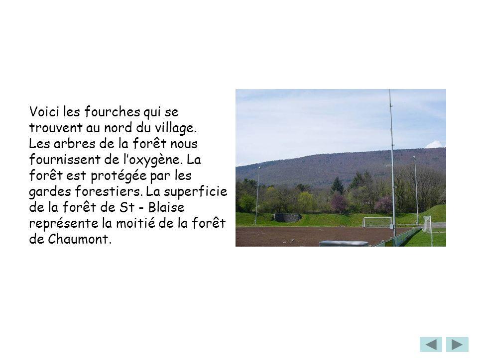 Voici les fourches qui se trouvent au nord du village