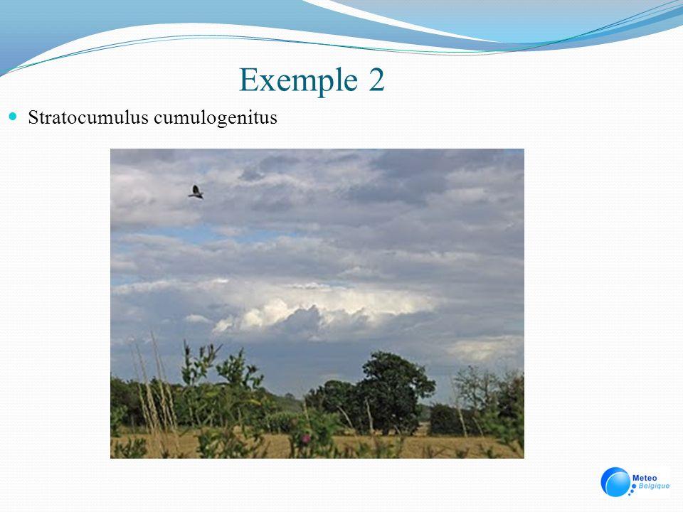 Exemple 2 Stratocumulus cumulogenitus