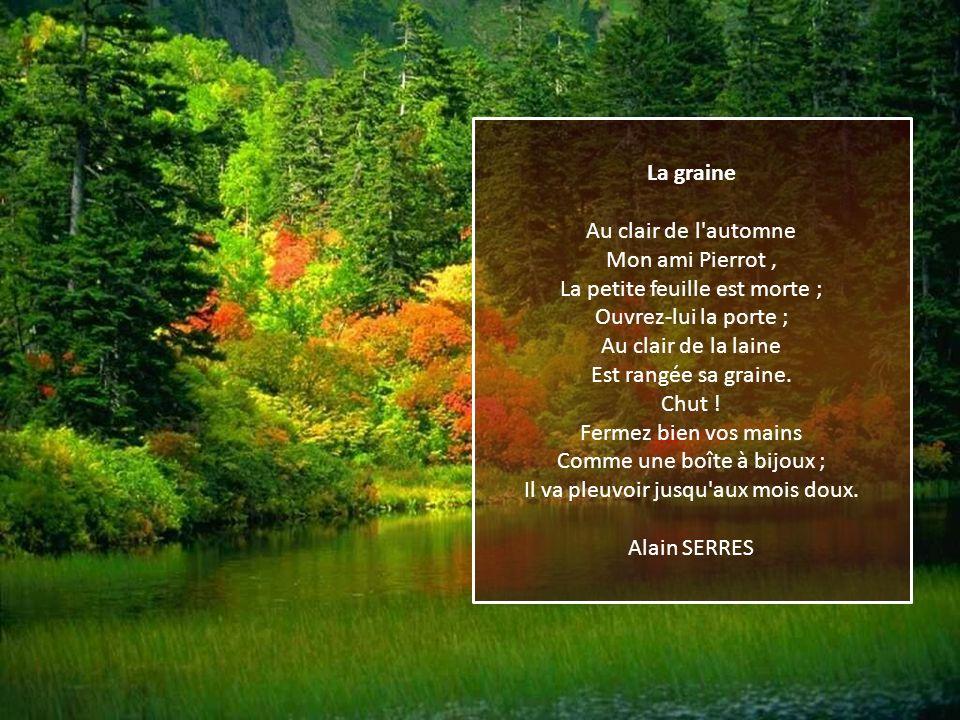 La graine Au clair de l automne Mon ami Pierrot , La petite feuille est morte ; Ouvrez-lui la porte ; Au clair de la laine Est rangée sa graine.