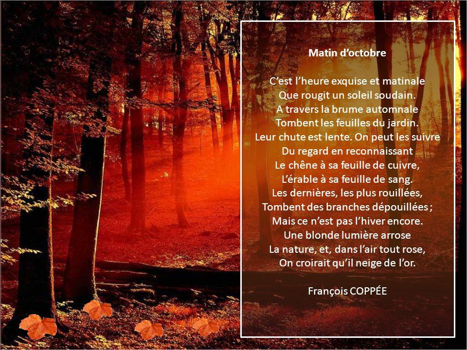 Matin d'octobre C'est l'heure exquise et matinale Que rougit un soleil soudain. A travers la brume automnale Tombent les feuilles du jardin.