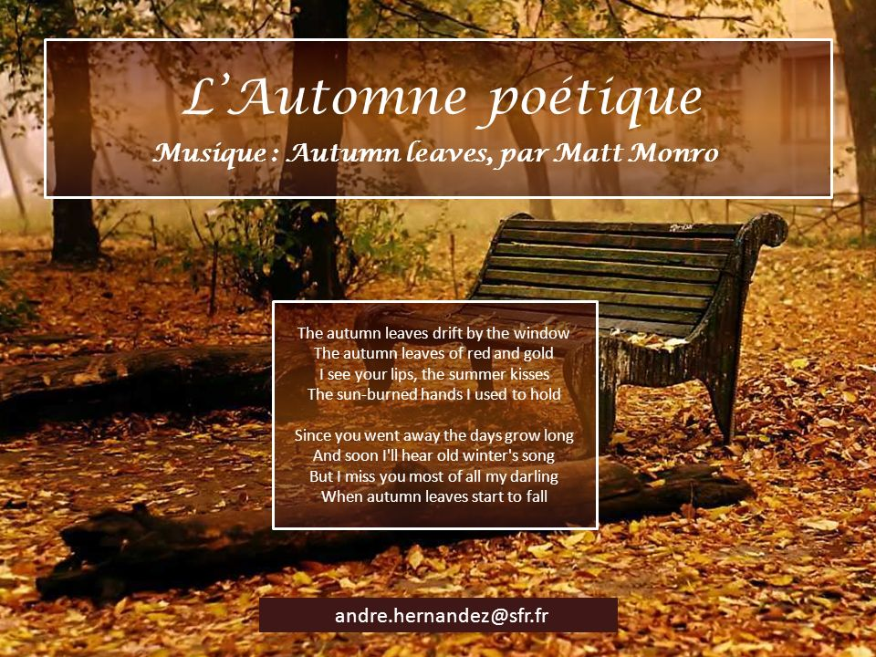 Musique : Autumn leaves, par Matt Monro