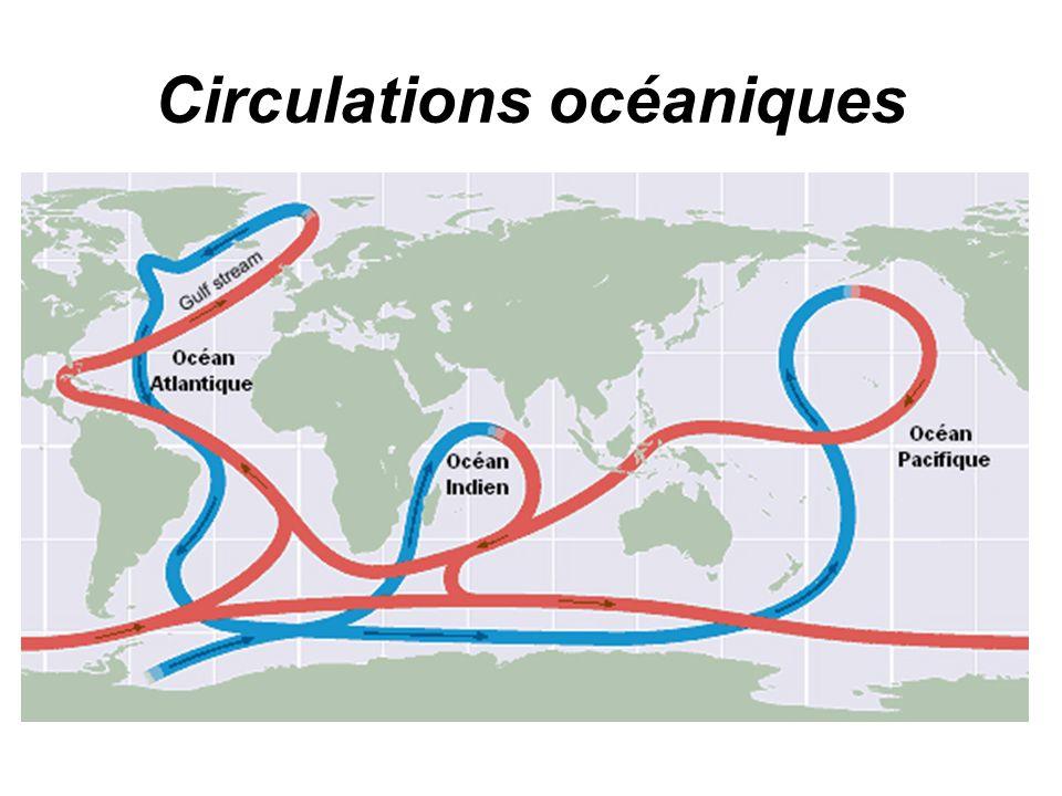 Circulations océaniques