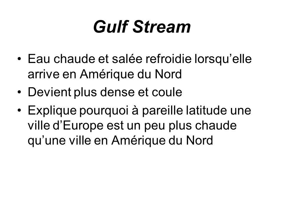 Gulf Stream Eau chaude et salée refroidie lorsqu'elle arrive en Amérique du Nord. Devient plus dense et coule.