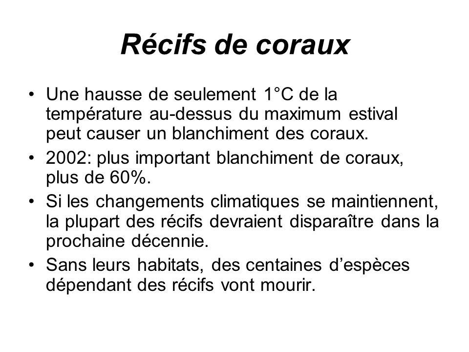 Récifs de coraux Une hausse de seulement 1°C de la température au-dessus du maximum estival peut causer un blanchiment des coraux.
