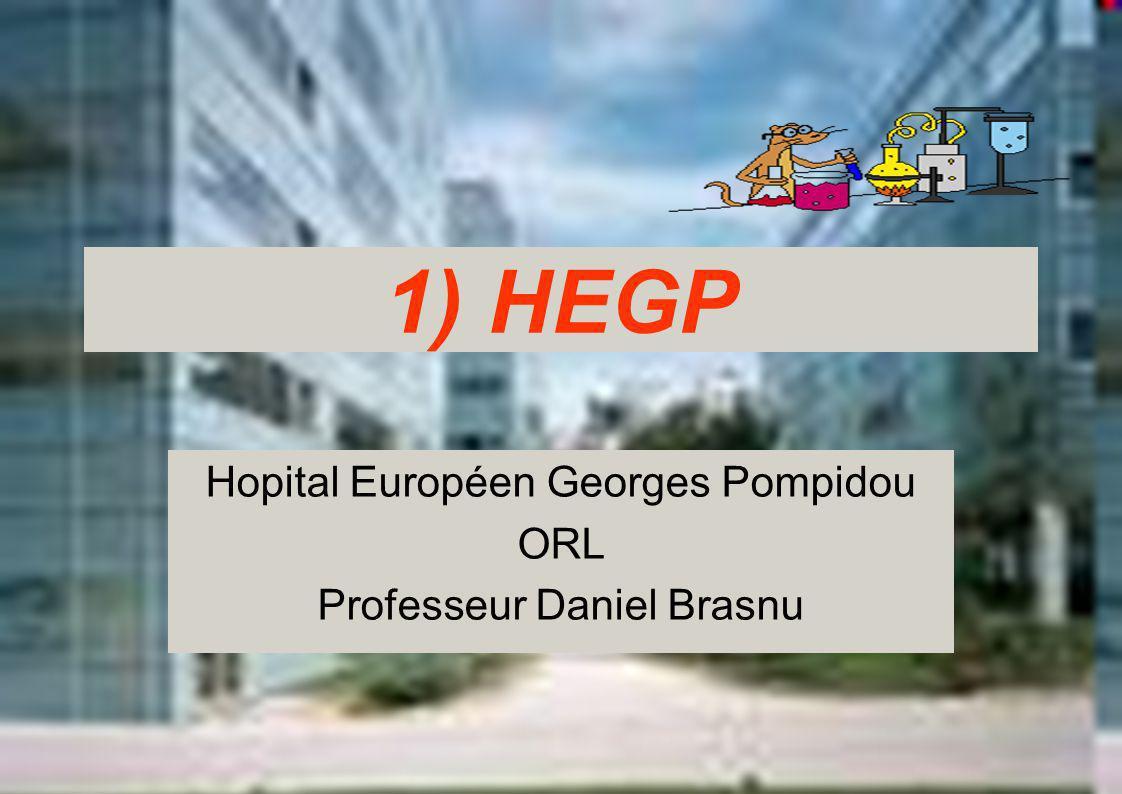 Hopital Européen Georges Pompidou ORL Professeur Daniel Brasnu