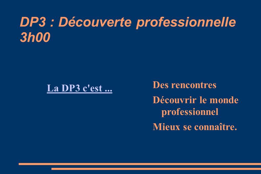 DP3 : Découverte professionnelle 3h00