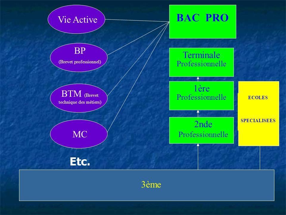 BAC PRO Etc. Vie Active BP Terminale 1ère