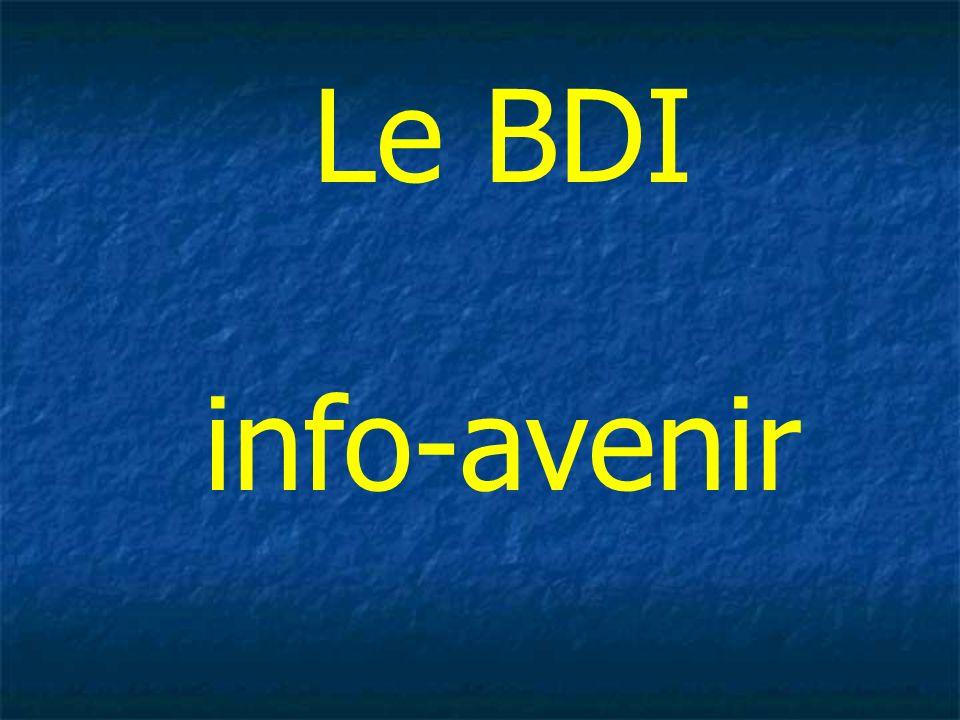 Le BDI info-avenir 51