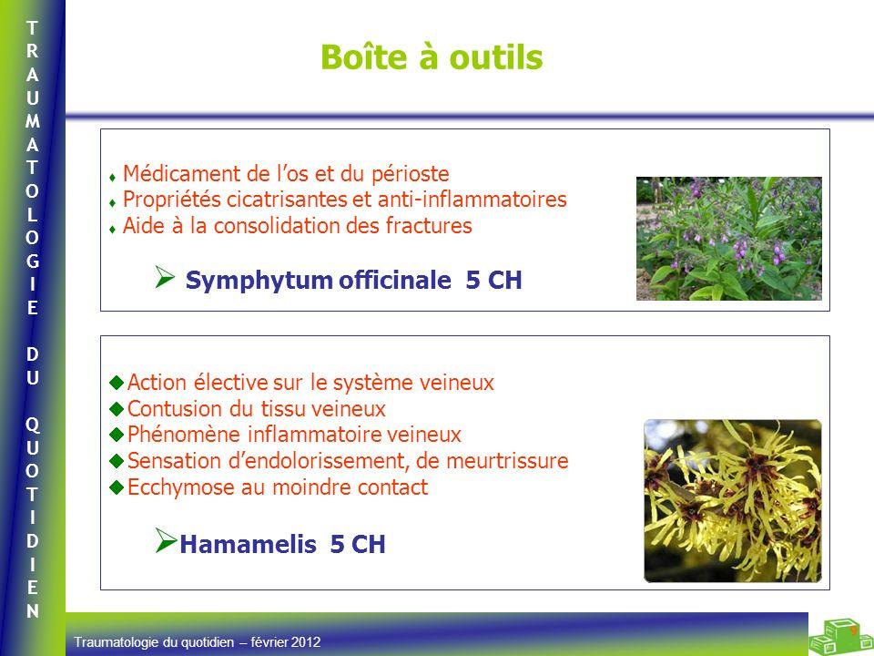Boîte à outils Hamamelis 5 CH Médicament de l'os et du périoste