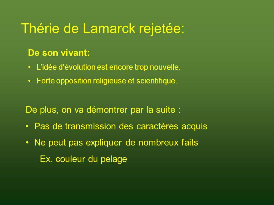 Thérie de Lamarck rejetée:
