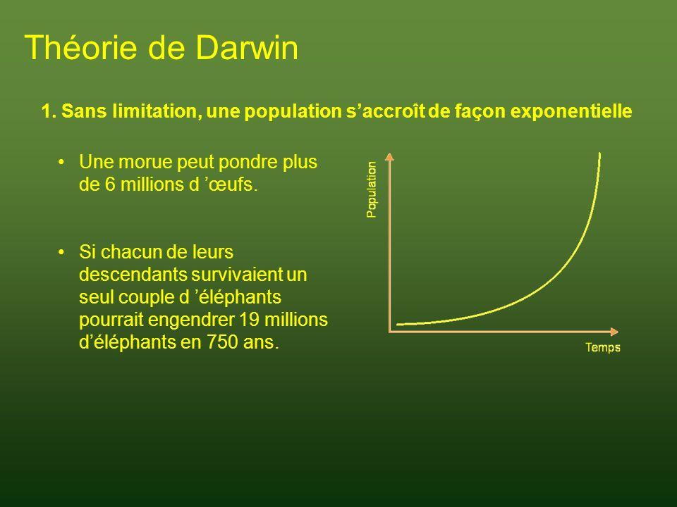 Théorie de Darwin 1. Sans limitation, une population s'accroît de façon exponentielle. Une morue peut pondre plus de 6 millions d 'œufs.