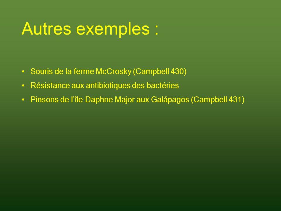 Autres exemples : Souris de la ferme McCrosky (Campbell 430)