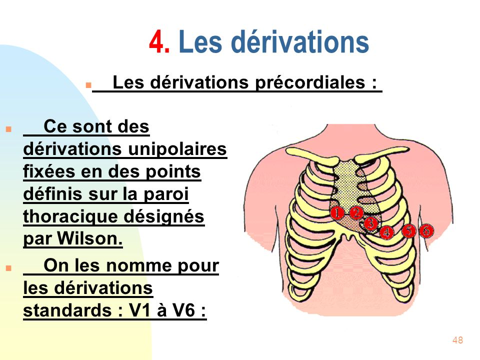 4. Les dérivations Les dérivations précordiales :