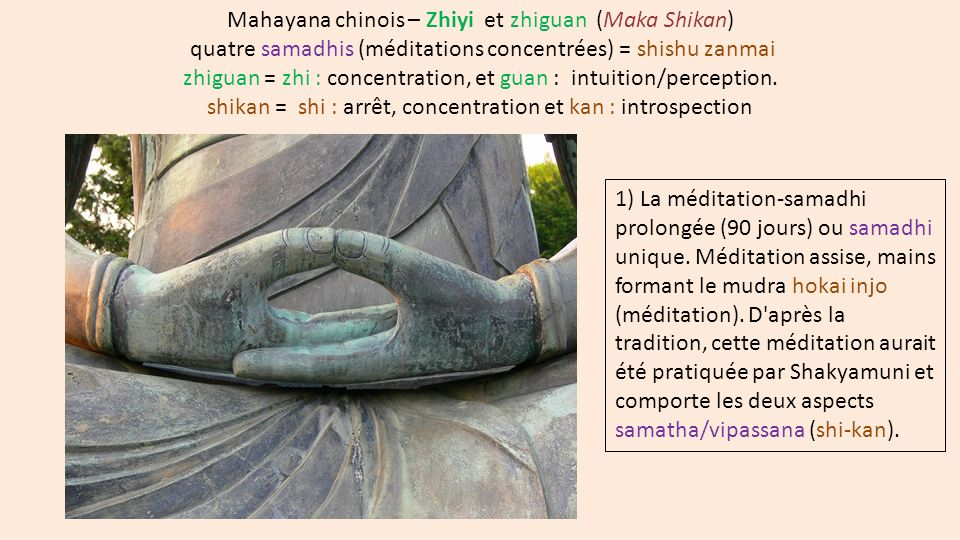 shikan = shi : arrêt, concentration et kan : introspection