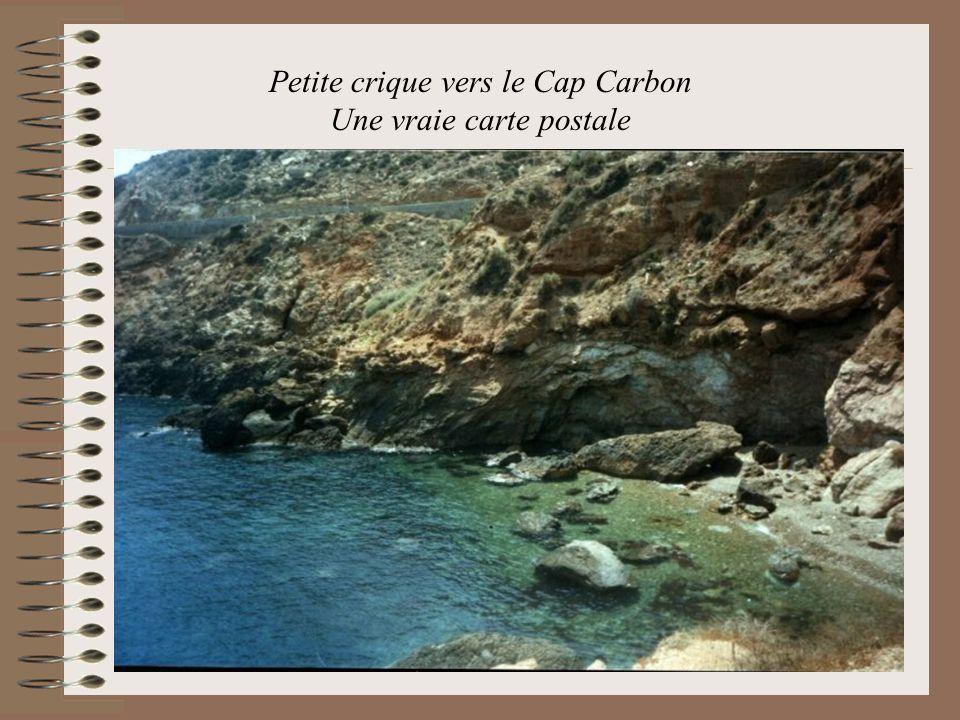 Petite crique vers le Cap Carbon Une vraie carte postale