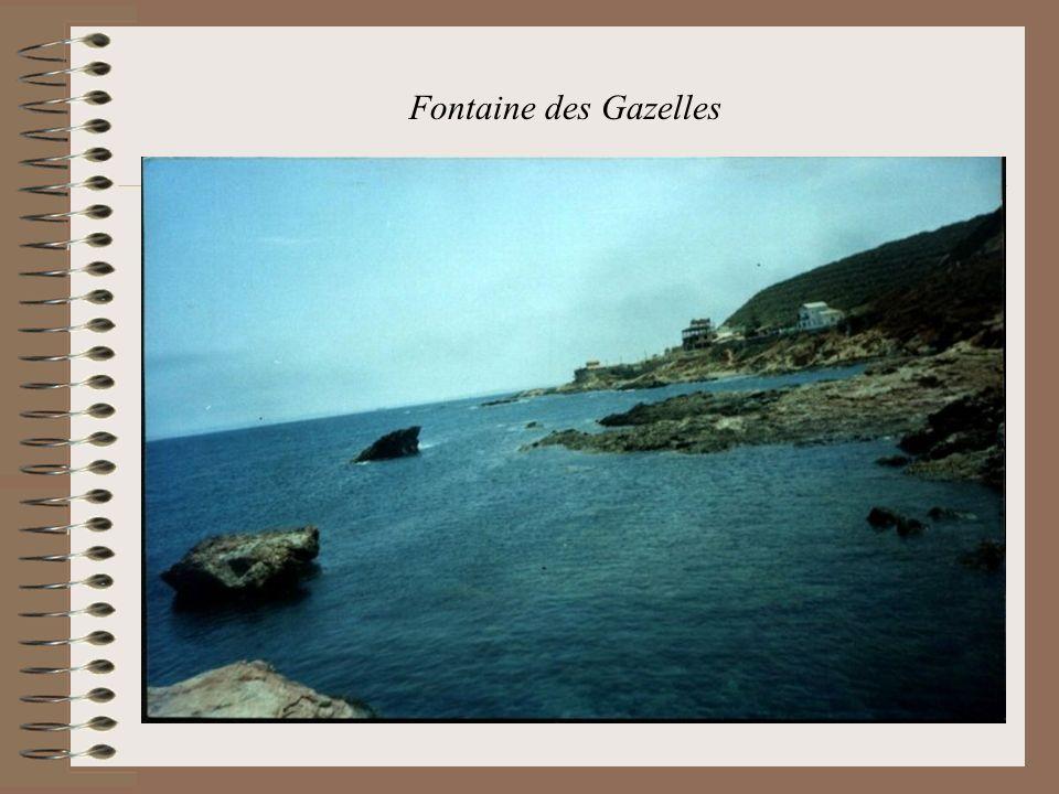 Fontaine des Gazelles