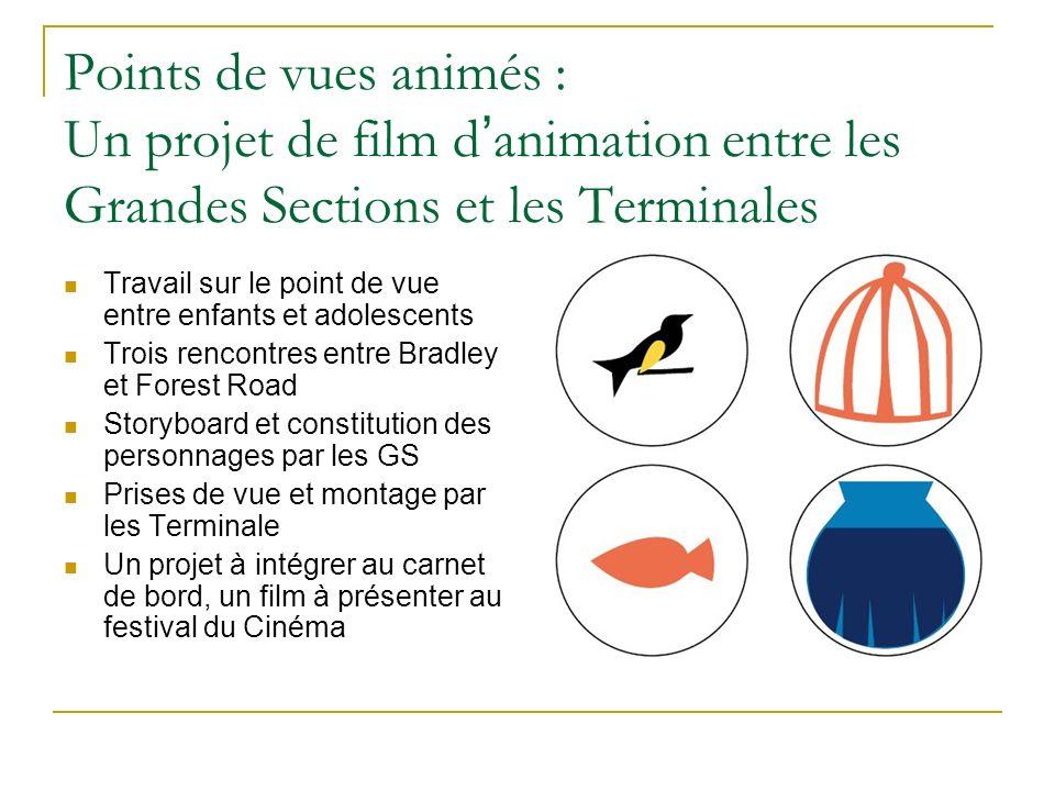 Points de vues animés : Un projet de film d'animation entre les Grandes Sections et les Terminales
