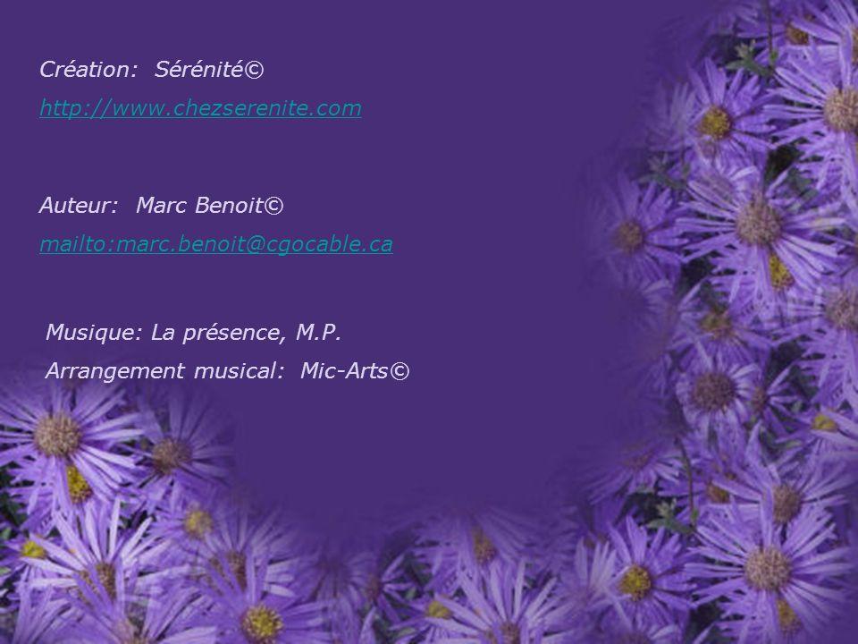 Création: Sérénité© http://www.chezserenite.com. Auteur: Marc Benoit© mailto:marc.benoit@cgocable.ca.