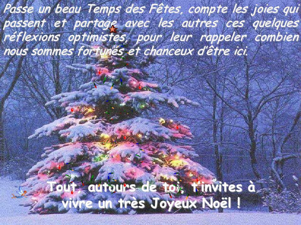 Tout, autours de toi, t'invites à vivre un très Joyeux Noël !