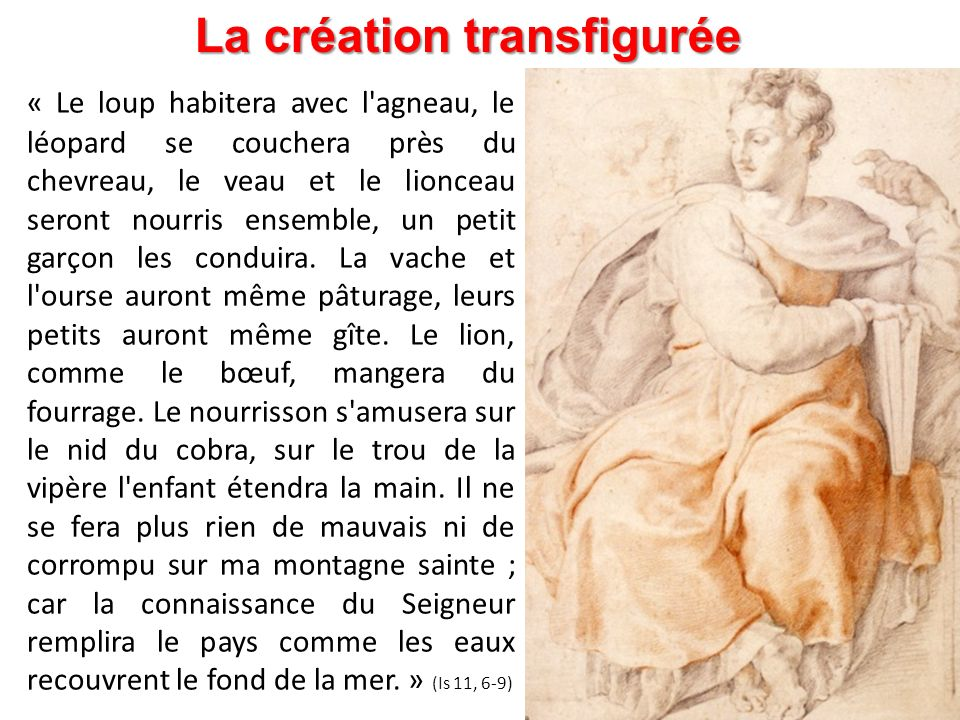 La création transfigurée