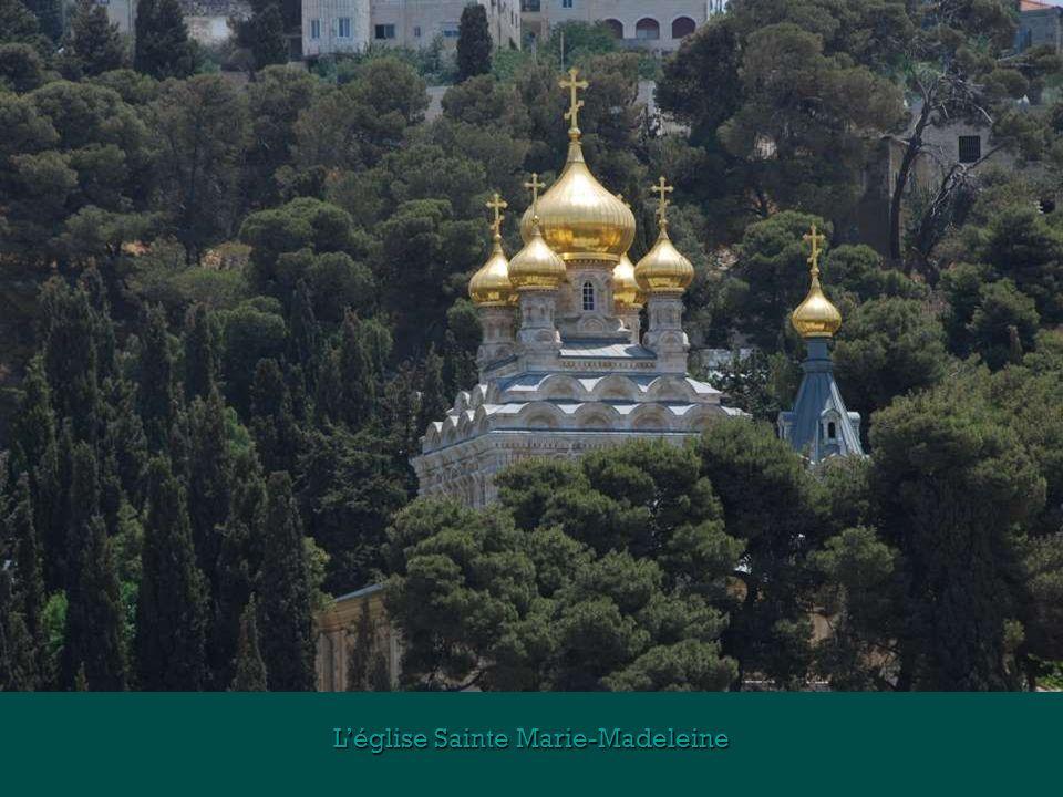 L'église Sainte Marie-Madeleine