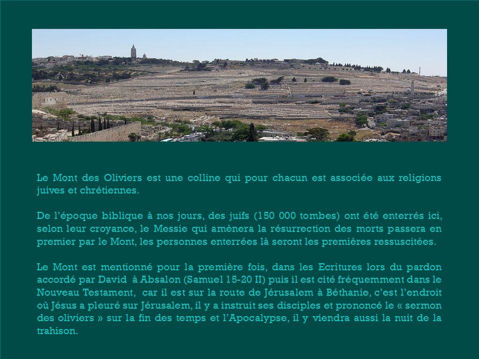Le Mont des Oliviers est une colline qui pour chacun est associée aux religions juives et chrétiennes.