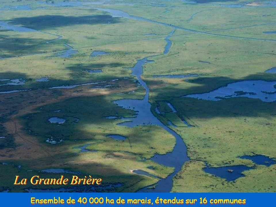 Ensemble de 40 000 ha de marais, étendus sur 16 communes
