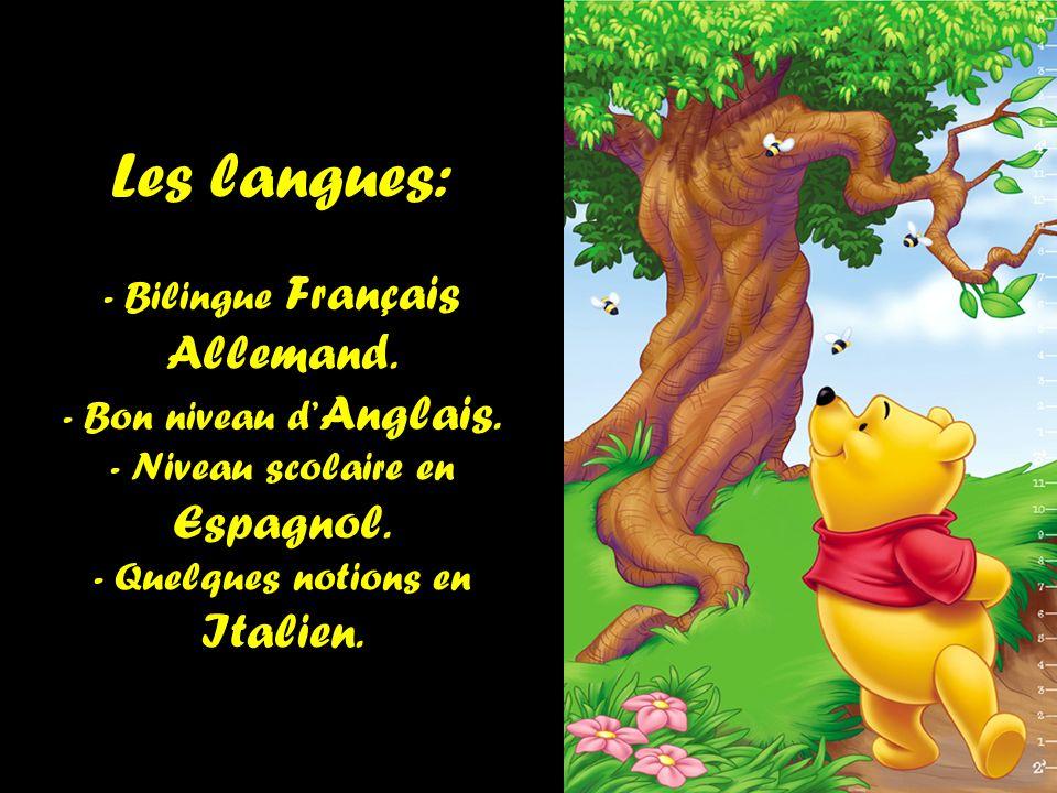 Les langues: - Bilingue Français Allemand. - Bon niveau d'Anglais