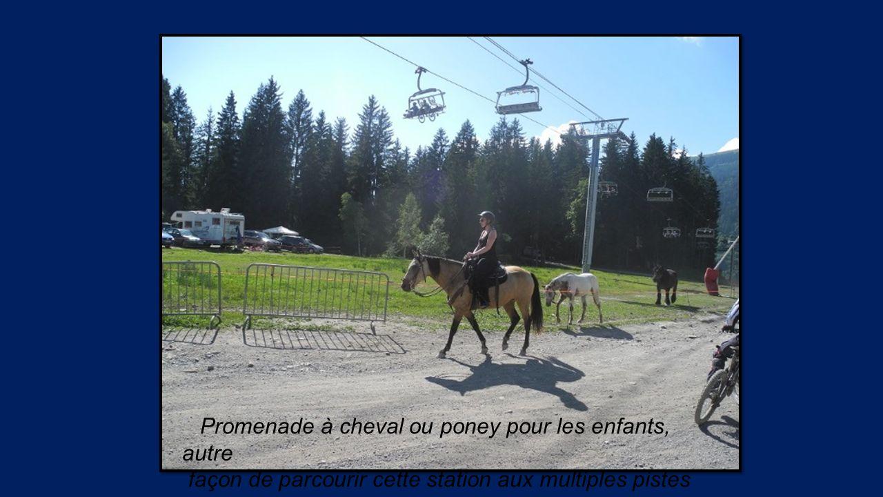 Promenade à cheval ou poney pour les enfants, autre