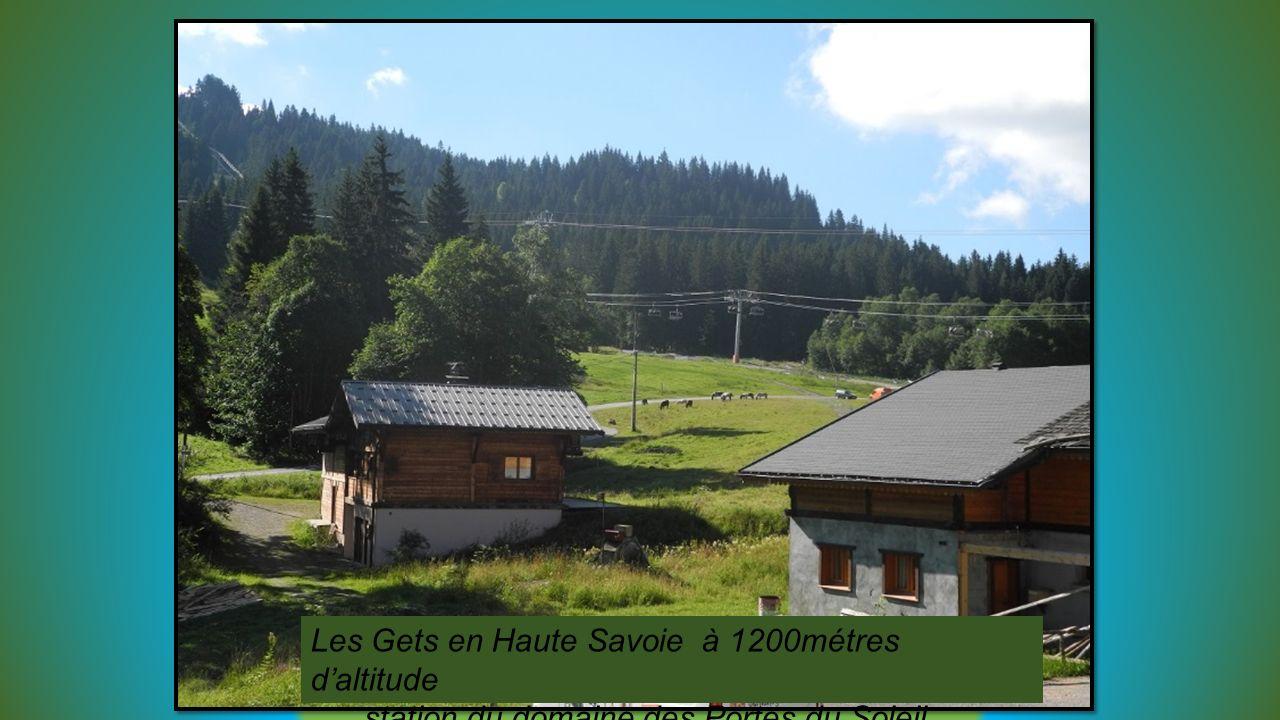 Les Gets en Haute Savoie à 1200métres d'altitude