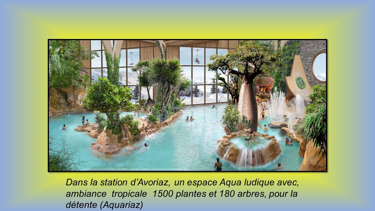 Dans la station d'Avoriaz, un espace Aqua ludique avec, ambiance tropicale 1500 plantes et 180 arbres, pour la détente (Aquariaz)
