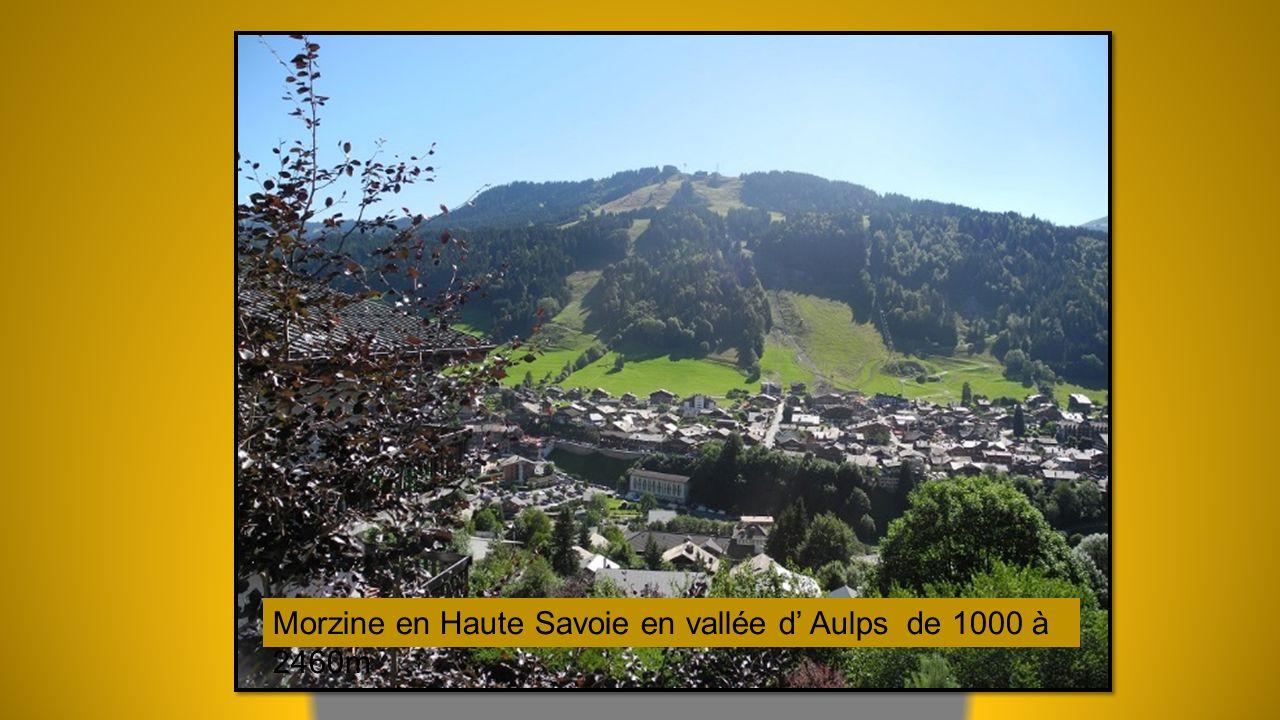 Morzine en Haute Savoie en vallée d' Aulps de 1000 à 2460m