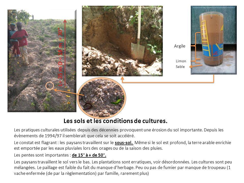 Les sols et les conditions de cultures.